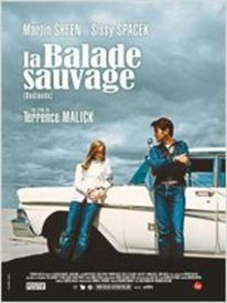 Dashboard_la_balade_sauvage