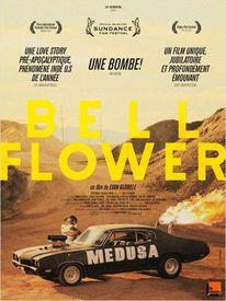 Dashboard_bellflowers