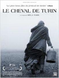 Dashboard_le_cheval_de_turin