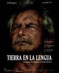 Dashboard_tierra-en-la-lengua